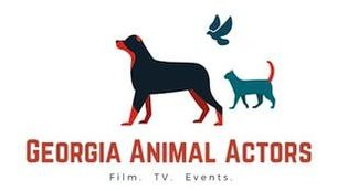 GEORGIA ANIMAL ACTORS - 818-723-1347 Studio trained animal talent serving Atlanta and beyond